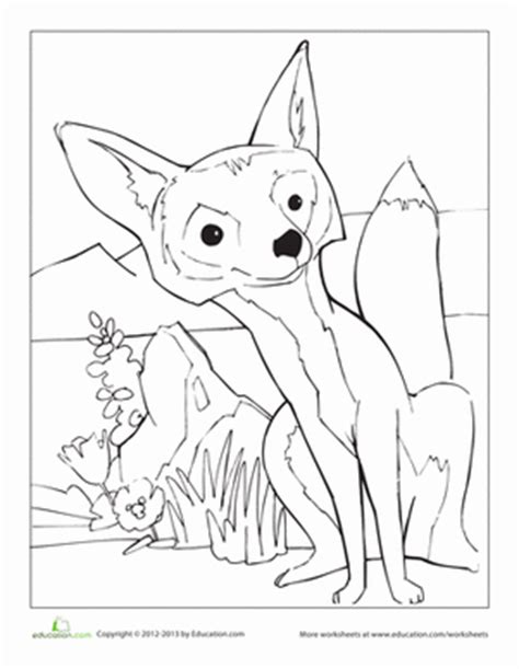 kit fox coloring page red fox worksheet education com