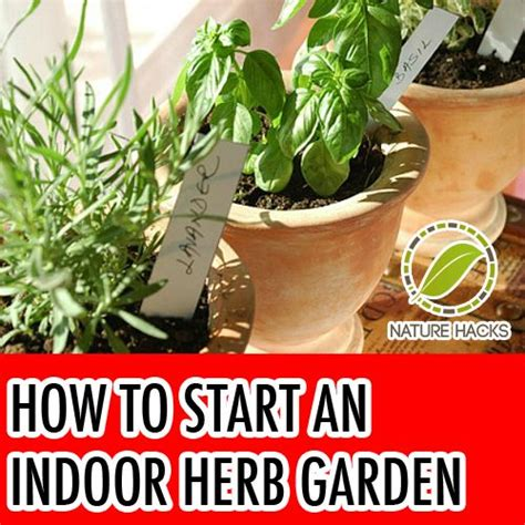 how to start an indoor herb garden kitchen confidante 174 how to start an indoor herb garden nature hacks food