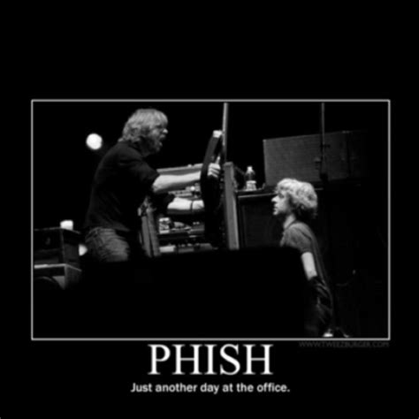 lyrics phish 148 best images about the phish on rigs