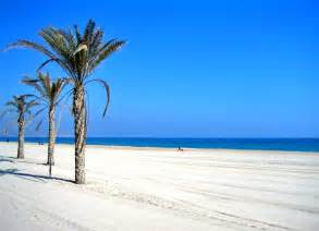 Reasons why you should study in valencia