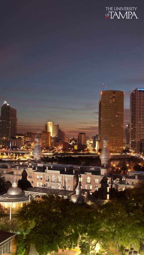 university  tampa public information wallpaper downloads
