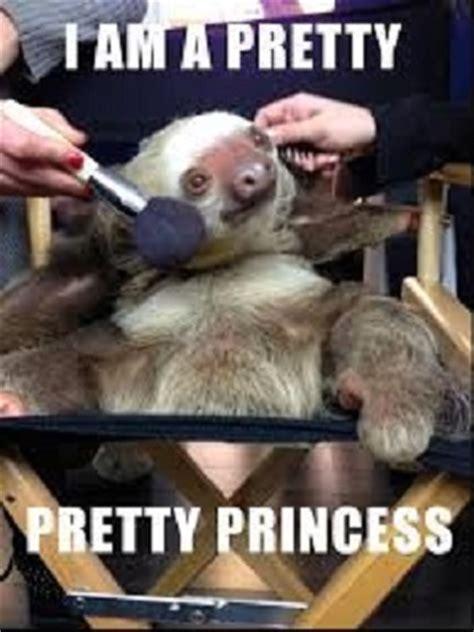 Baby Sloth Meme - sloth memes weneedfun