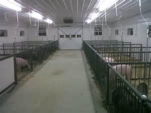 Hog Barns For Sale Humphrey Agri Marketing Solutions Llc Guyer Cattle Goes