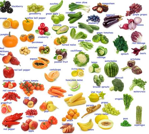 2 vegetables name best 25 vegetables names with pictures ideas on