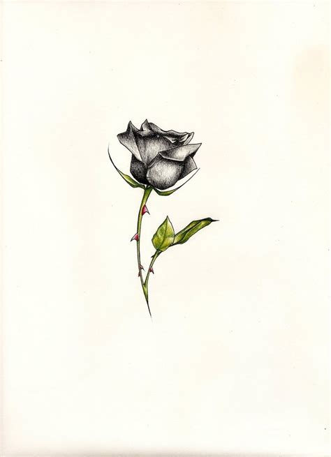 simple black rose tattoo black by johnvichlenski on deviantart
