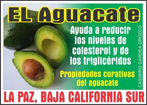 alimentos malos para el colesterol y trigliceridos el aguacate yuda a reducir los niveles de colesterol y de