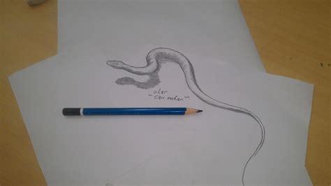 cara membuat gambar 3d hewan 4 cara untuk menggambar gajah wikihow gambar animasi