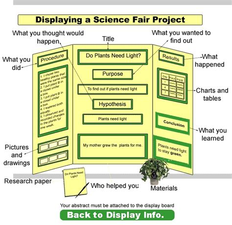 science fair project report sle science fair boards exles outstanding science fair