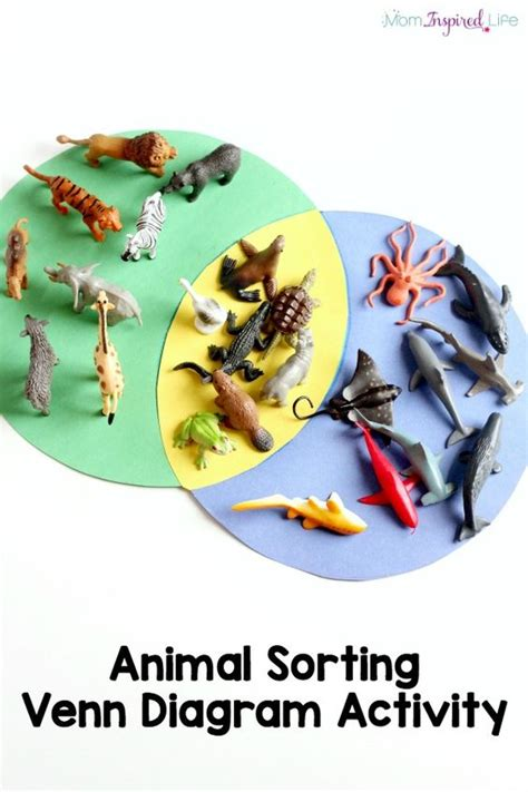 learn venn diagram sorting animals venn diagram activity for animal