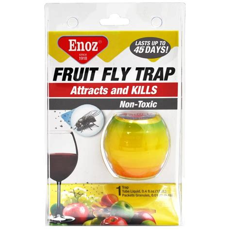 fruit fly trap enoz fruit fly trap 3 pack r11 3 the home depot