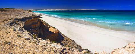Home Group Wa Design by Buy Pictures Of Eyre Peninsula Photos Of Eyre Peninsula