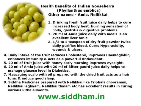 how much indian blood to claim benefits how much indian amla health benefits of indian gooseberry