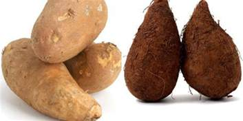 what s the difference between sweet potatoes and yams