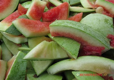 Benih Buah Semangka membuat manisan kulit semangka benih pertiwi