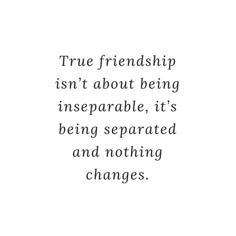 quotes about true friends 10 heartwarming true friends quotes quotereel