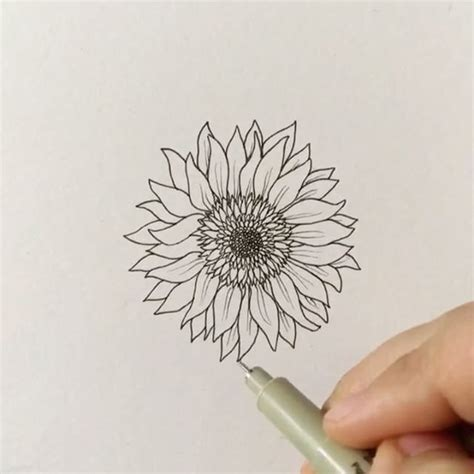 doodle paint draw best 25 sunflower drawing ideas on
