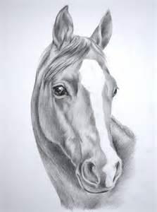 pencil drawings of horses drawing pencil