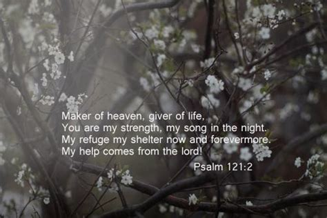 my comfort my shelter maker of heaven giver of life you are my strength my