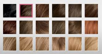 clairol nice n easy hair color chart 21 best images