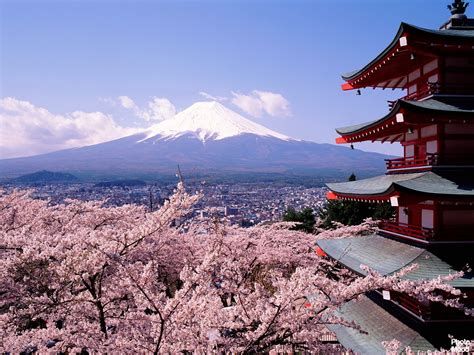 in japan beautiful cherry blossoms and mount fuji japan photo mood
