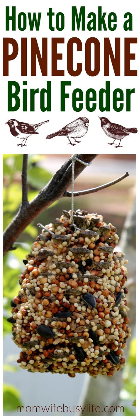 the 25 best bird feeder craft ideas on pinterest make a