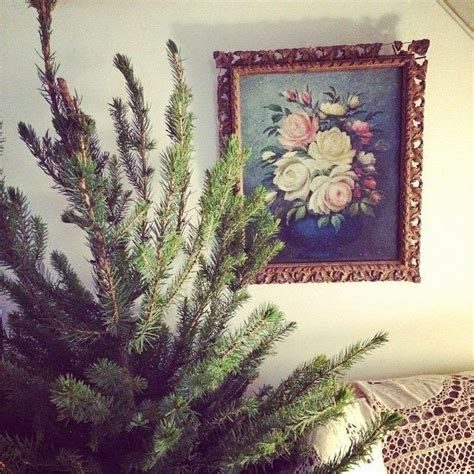 a handmade cottage a potted christmas tree for life