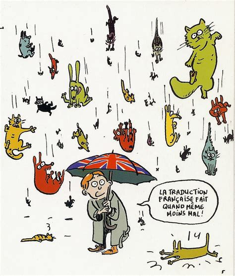 it s raining cats and dogs idioms it s raining cats and dogs fernand l 233 ger