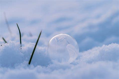 image libre flocon de neige ciel nature macro detail
