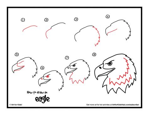where to draw how to draw a bald eagle step by step pencil drawing