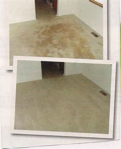 rug cleaning jacksonville class carpet cleaning jacksonvlle carpet cleaning jacksonville florida