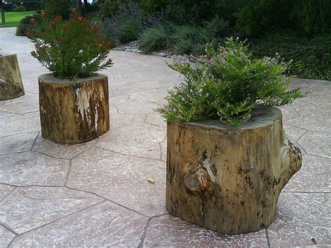 what to do with plant stump as christmas decoration outdoors how to make your own tree stump planter diy projects for everyone
