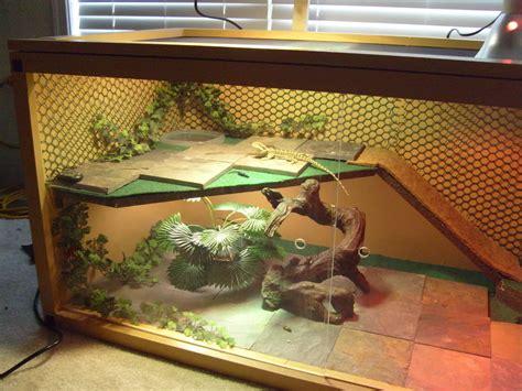Reptile Habitat Decor Bearded Dragon Habitat On Pinterest Bearded Dragon