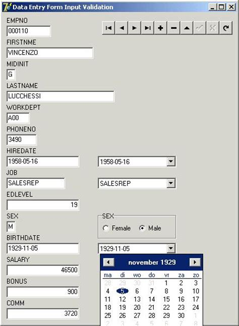 format datetime delphi data entry input validation with delphi kylix and c builder