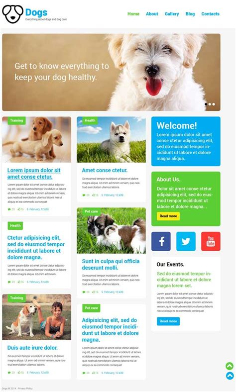 themes bootstrap pets 6 best dog responsive website bootstrap themes designmaz
