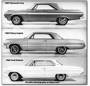 Plymouth Cars Of 1964  Savoy Belvedere Fury Valiant
