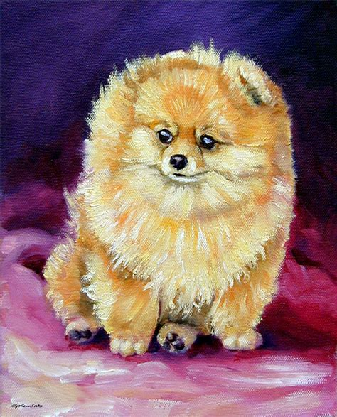 pomeranian painting dude pomeranian painting by lyn cook