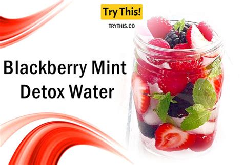 Blackberry Detox Water by Detox Water Top 50 Fruit Infused Water Recipes Health
