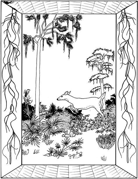 Florida Coloring Pages Coloring Home Florida Coloring Pages