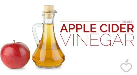 best vinegar the best apple cider vinegar health insure guides