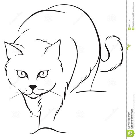 Outline Cat Royalty Free Stock Image Image 28272716 Outline Pictures