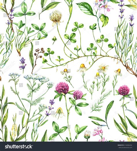 watercolor botanical pattern handdrawn watercolor seamless botanical pattern different