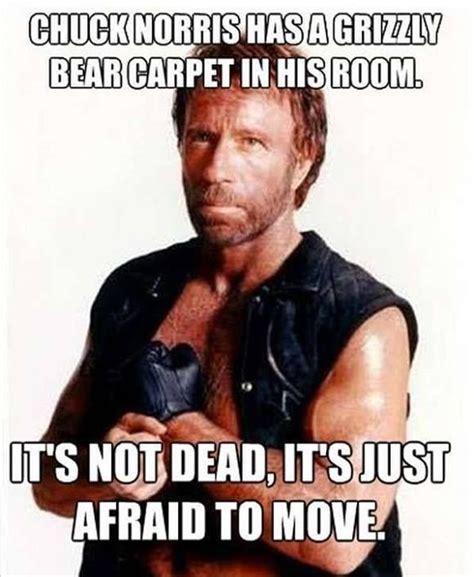 Meme Chuck Norris - chuck norris funny quotes quotesgram