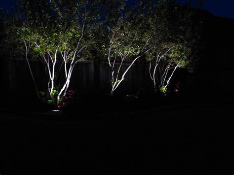 Led Outdoor Tree Lights Will Give A Remarkable Look To Led Outdoor Landscape Lights