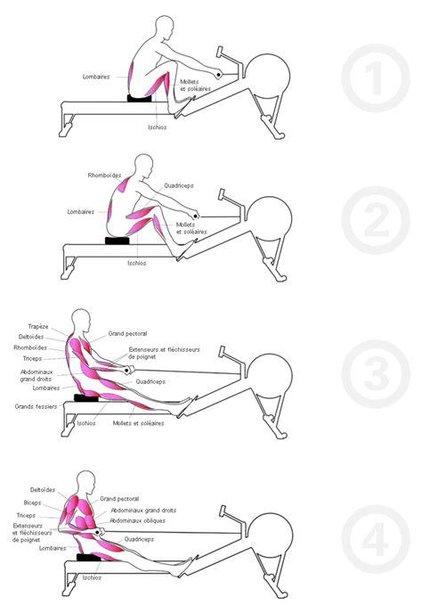 Position Banc De Musculation by Rameur Position Muscu Maison