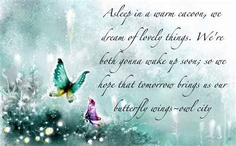 butterfly sayings quotes about butterfly quotesgram