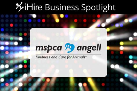 Ihire Search Business Spotlight Ihire