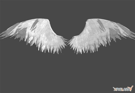 Anggle Cape Wing wings on wing tattoos how to draw