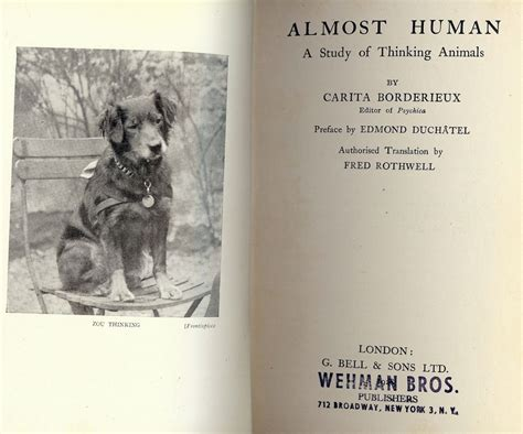 almost human books almost human a study of thinking animals