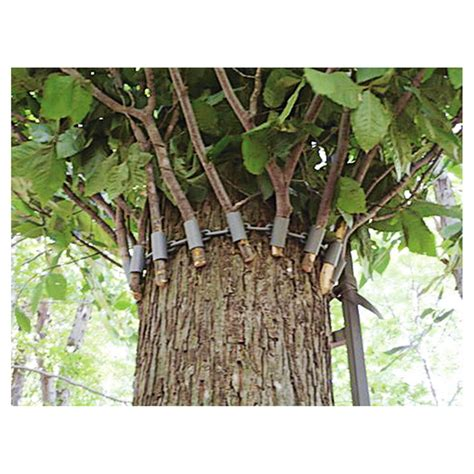 blind products tree stand blind gnewsinfo