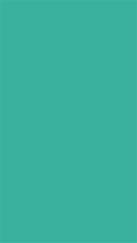 solid color backgrounds 640x1136 keppel solid color background phone wallpaper